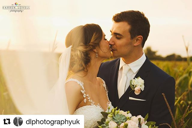 So beautifully captured by the amazing @dlphotographyuk ✨✨✨✨✨✨ ✨✨✨✨✨✨✨ So grateful to be a part of this beautiful wedding along with @katecarrollmua at @parley_manor  #dlphotography #parleymanor #parleystudio #samanthastevenson #weddinghair #weddinghairdorset #weddinghairuk #wedding #bridalhairdorset #dorsetwedding #dorsetweddings