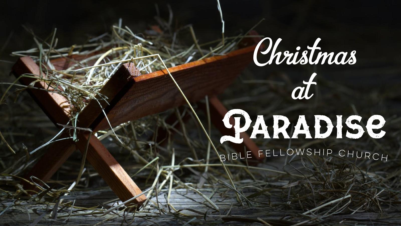 christmas at paradise.png