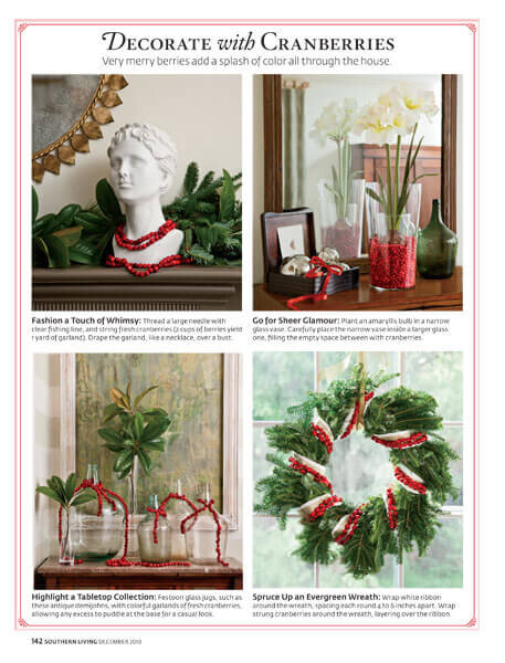 cranberry-decorations.jpg