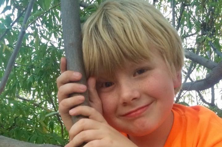 Wilson in a tree.jpeg