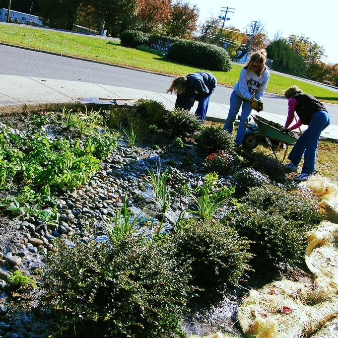 Rain gardens are an example of green infrastructure that filters polluted runoff and removes pollution before the water reaches streams.