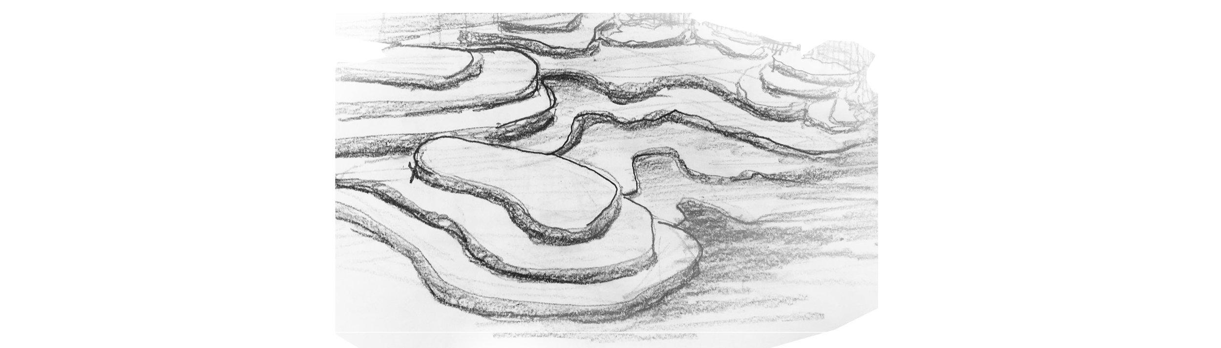 frick sketch.jpg
