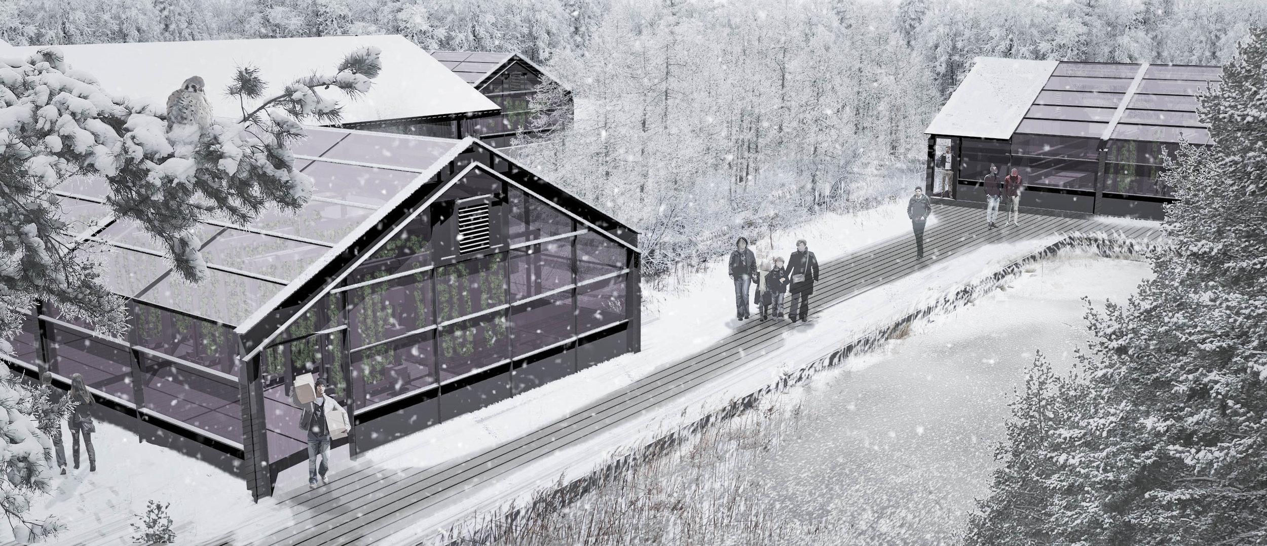 A Final snow2.jpg