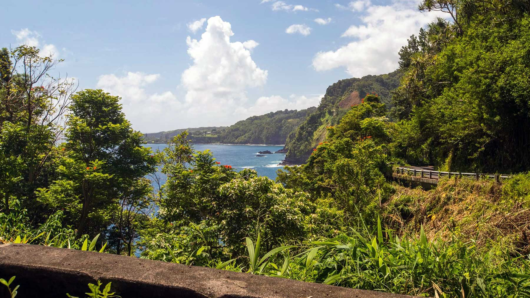 Tips for Road to Hana -