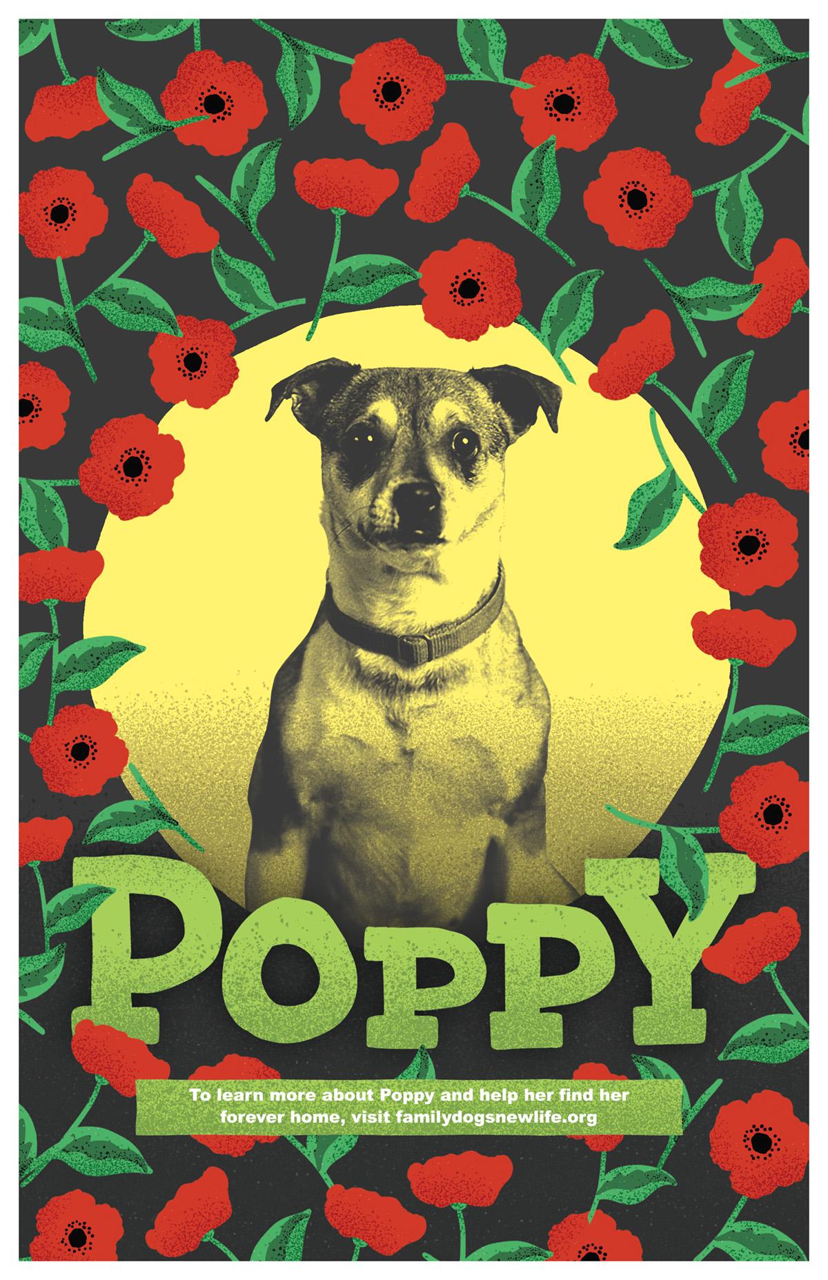 Poppy Poster-DIGITAL.jpg
