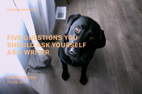 Questions banner.jpg