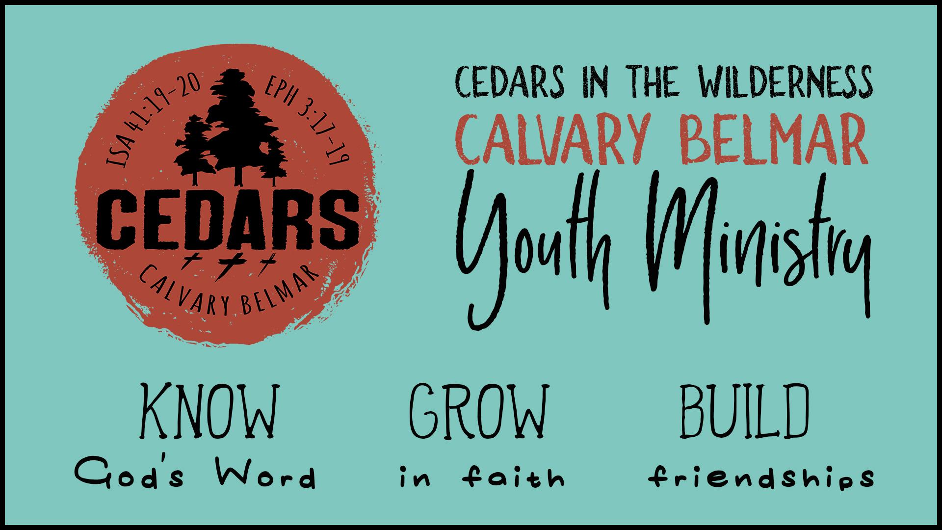 Cedars Overhead.jpg