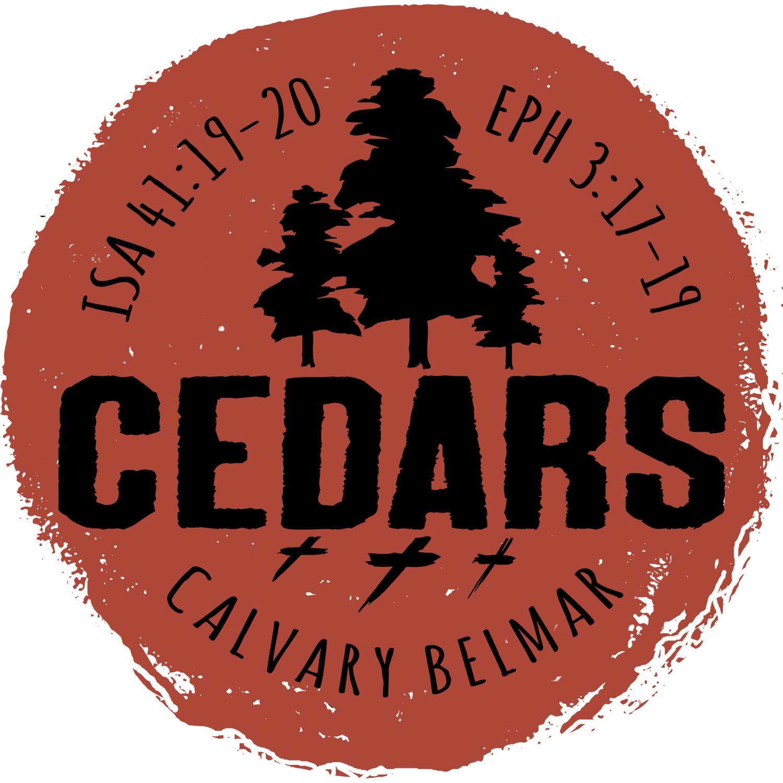 Cedars Blog.jpg