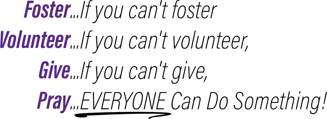 Foster Quote.jpg