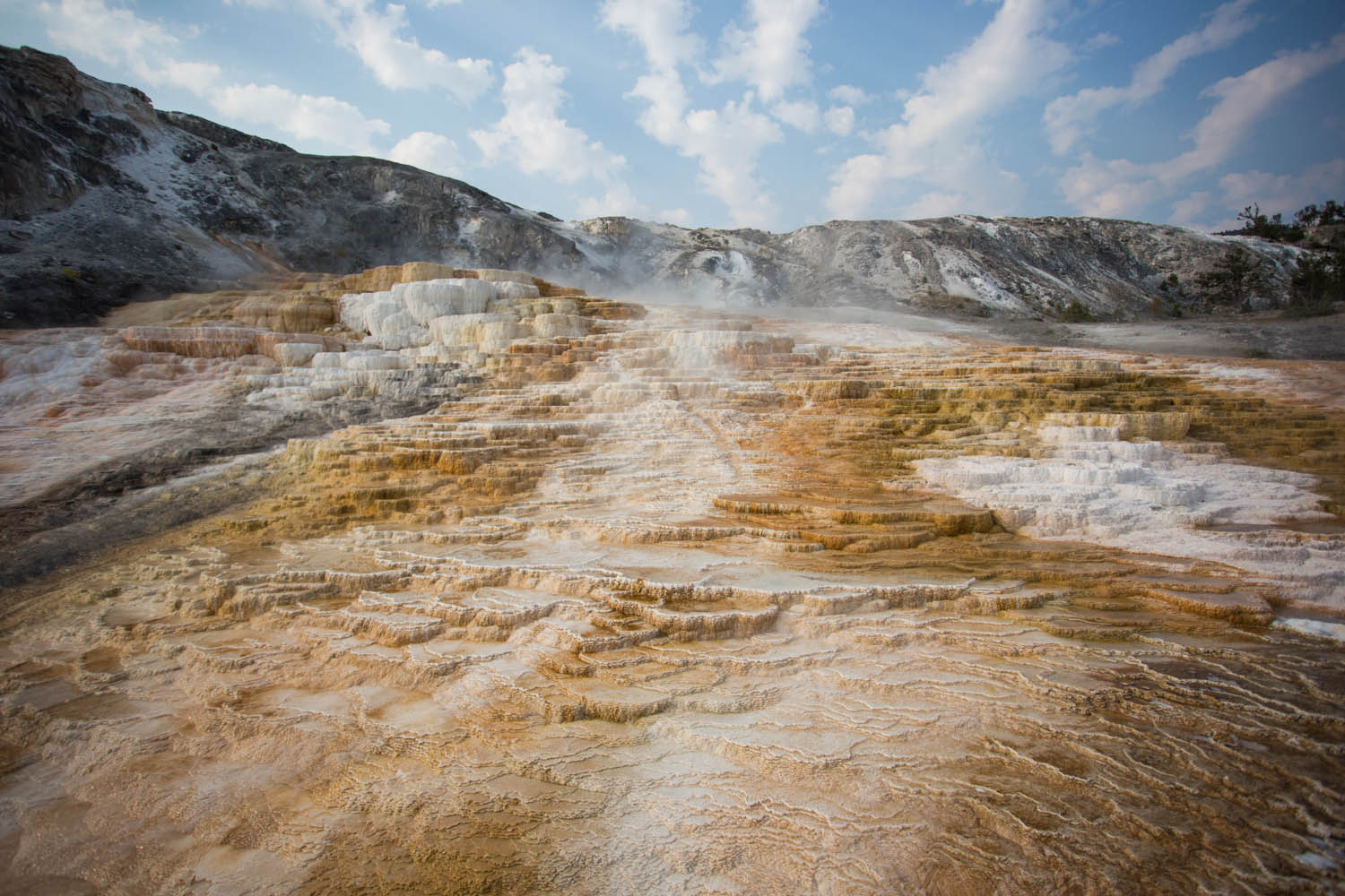 Travertine Terraces • Yellowstone National Park, Wyoming; USA