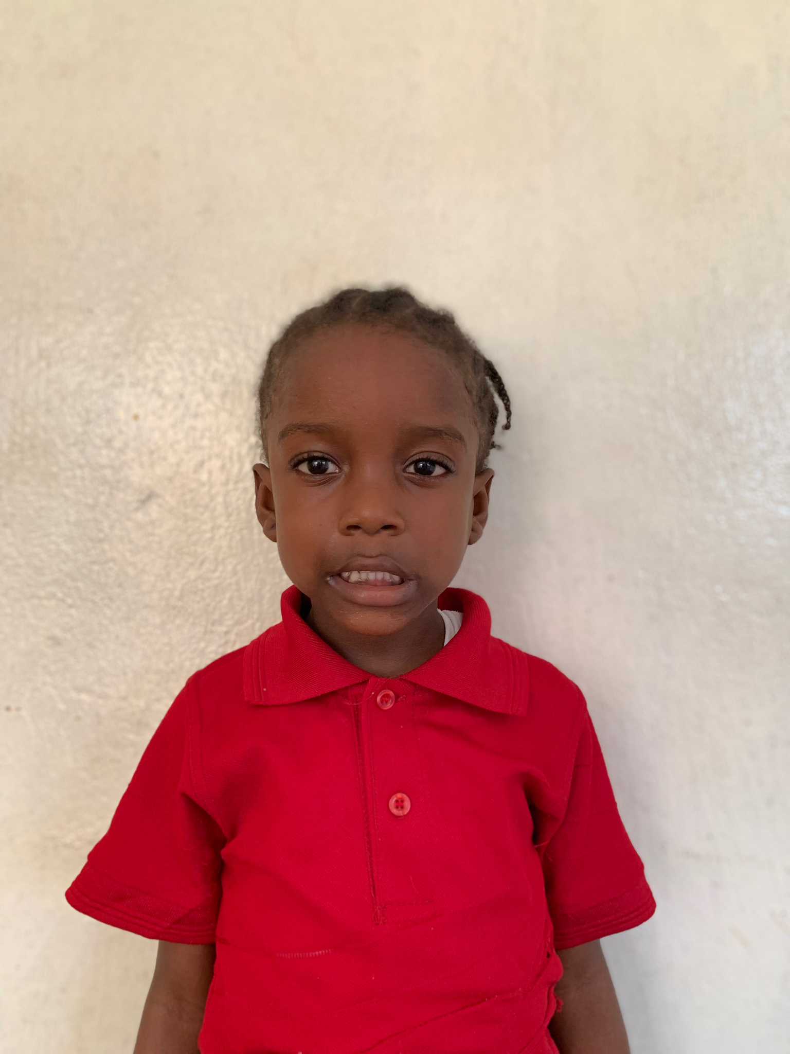 Hello, my name is Mary Johnson. - Mary is a 4-year-old girl.Mary lives with her mother and brother; and loves alligators, drawing, and the color blue.