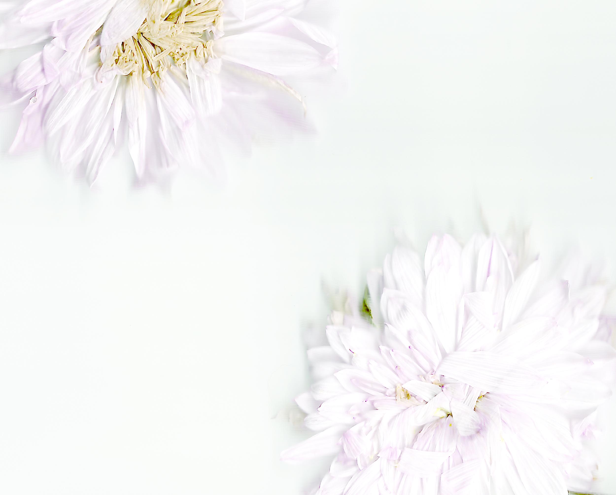 hayley-roberts-photo-design-art.jpg