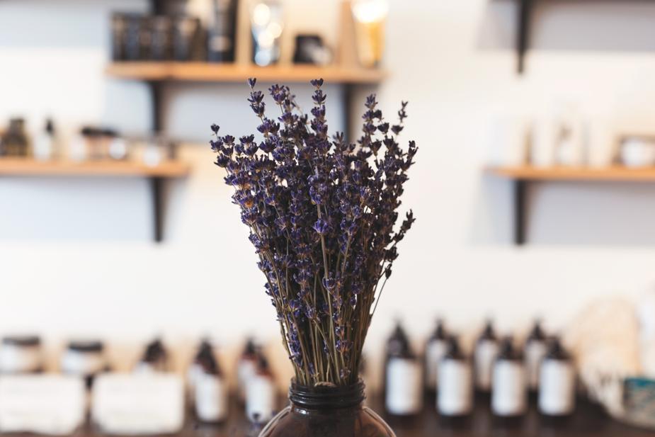 lavender-in-shop_925x.jpg