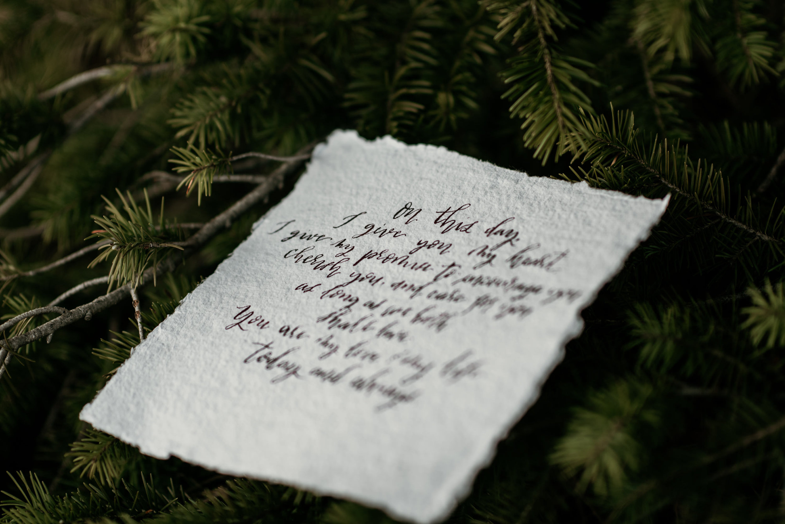 WildEarthWeddings-abbyco-calligraphy-vows31.jpg