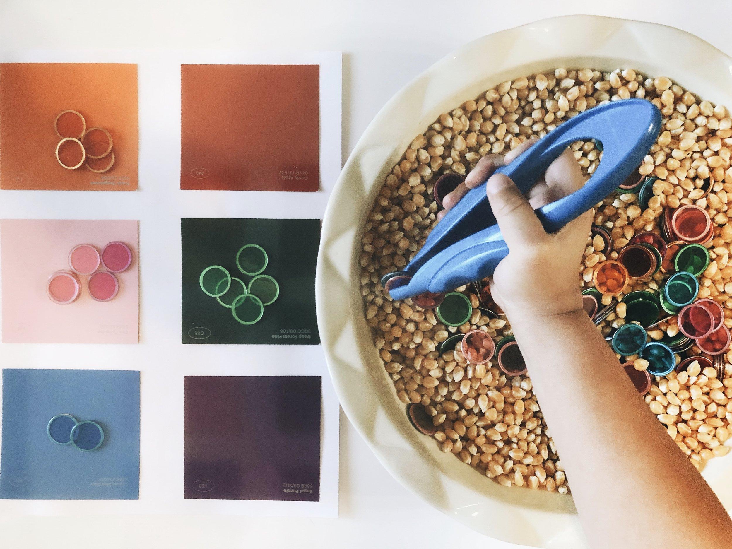 corn-color-match.jpg