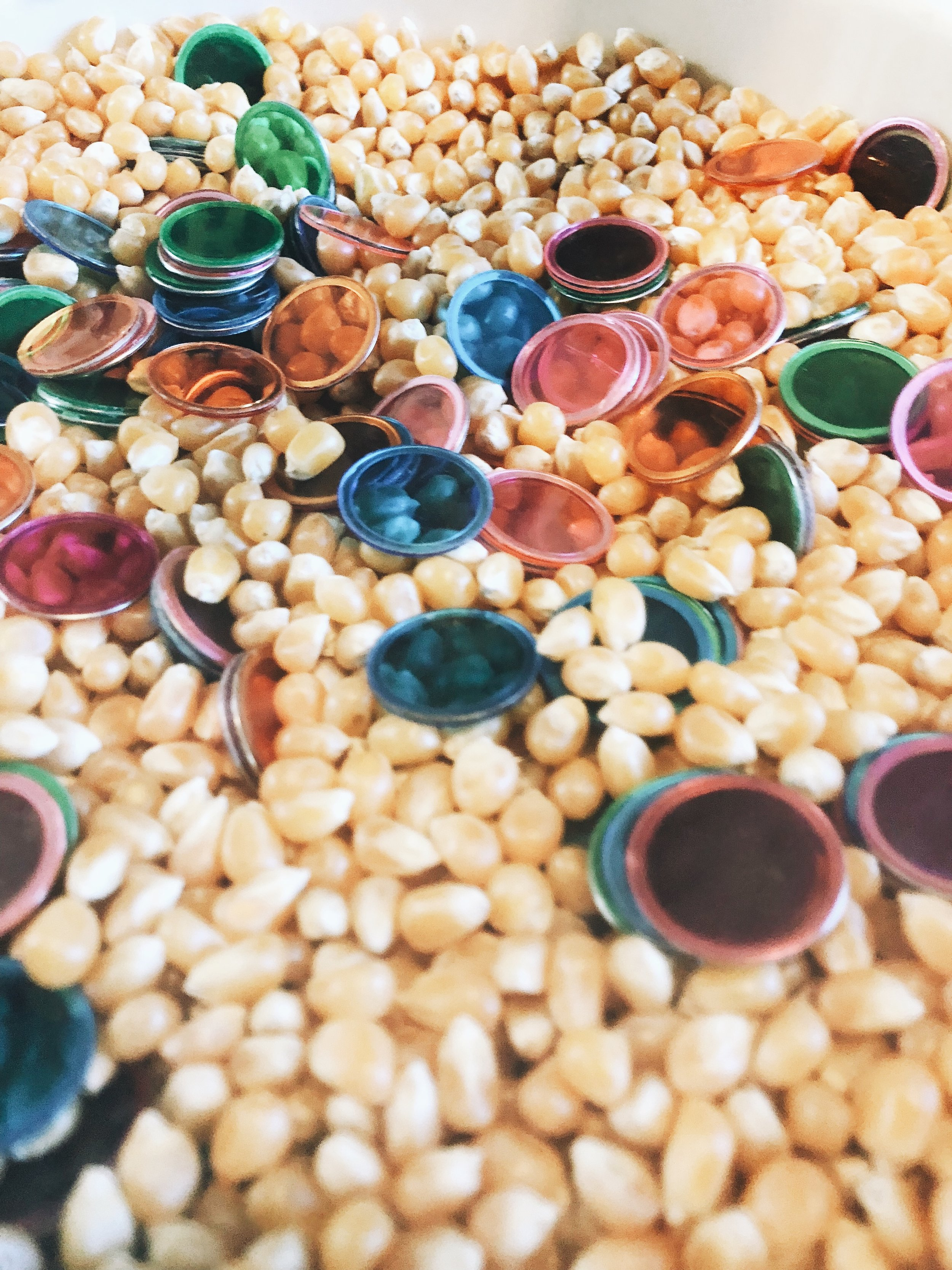 corn-color-sort.JPG