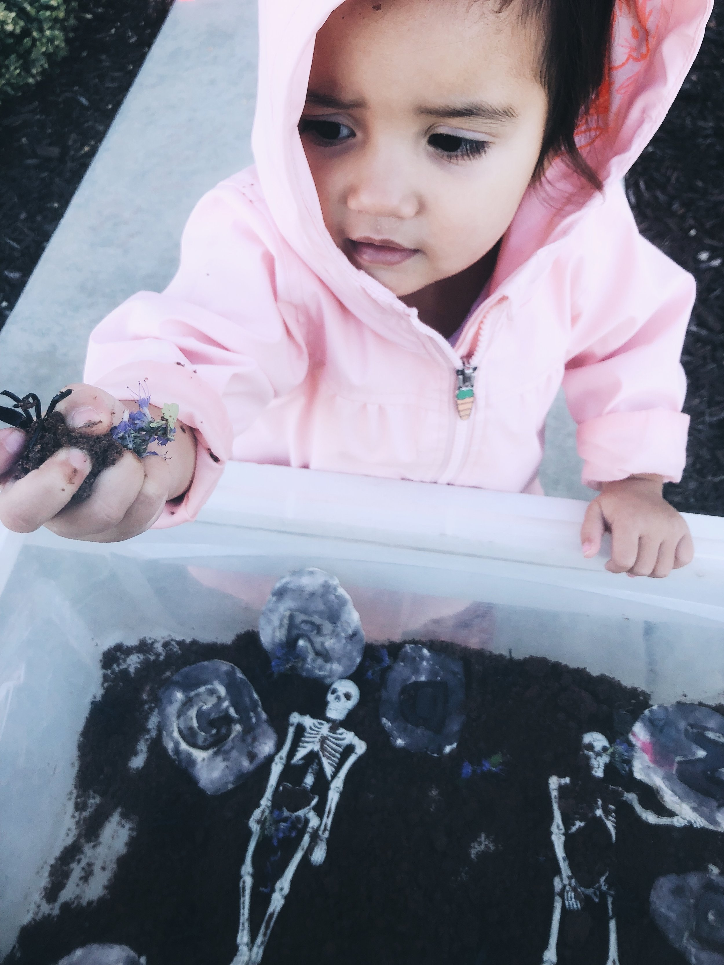 """She loved squishing the """"dirt"""" We also added in some spider rings, skeletons, and mini flowers for an added sensory experience!"""