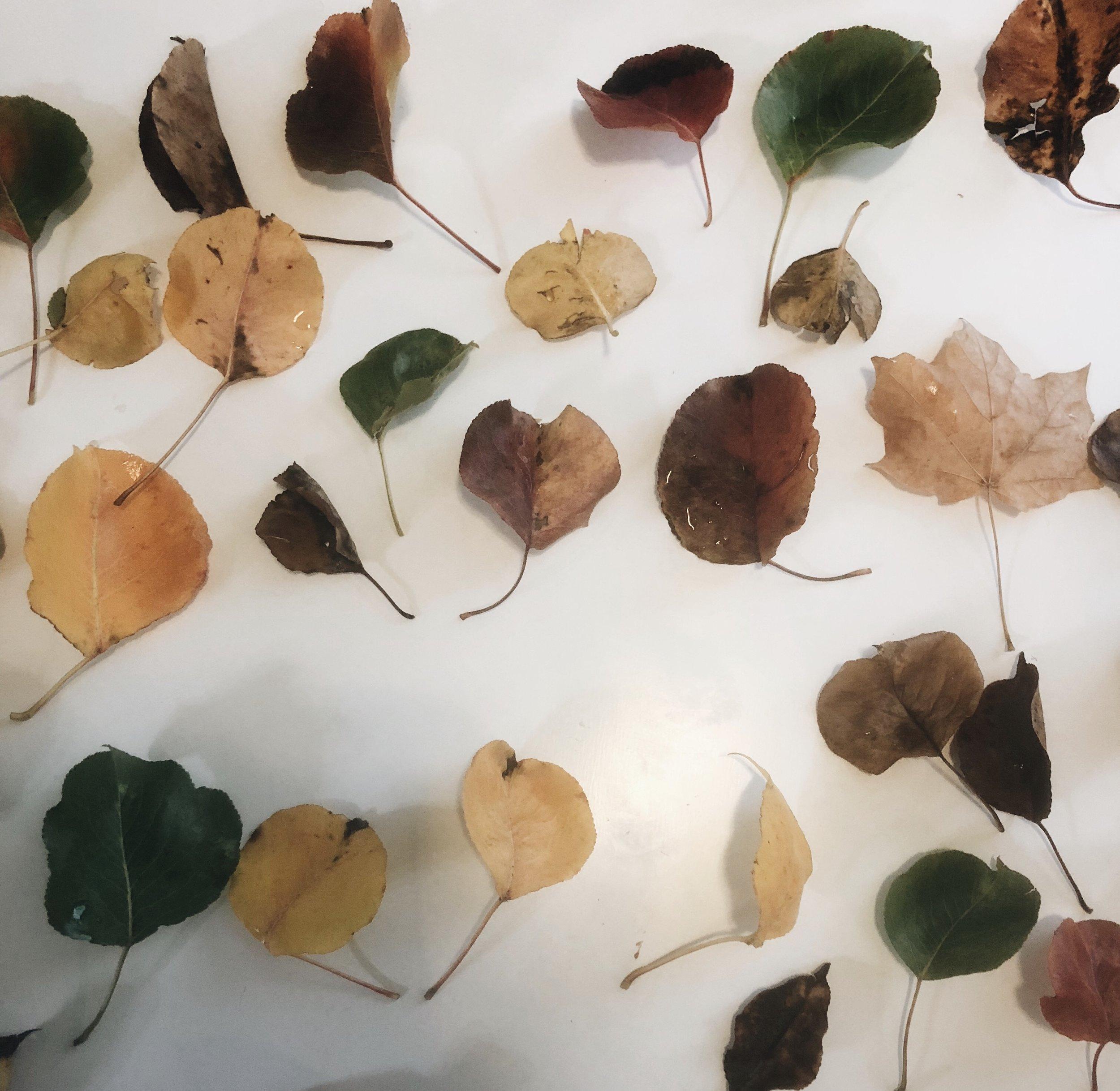 leaf-necklace-3.jpg