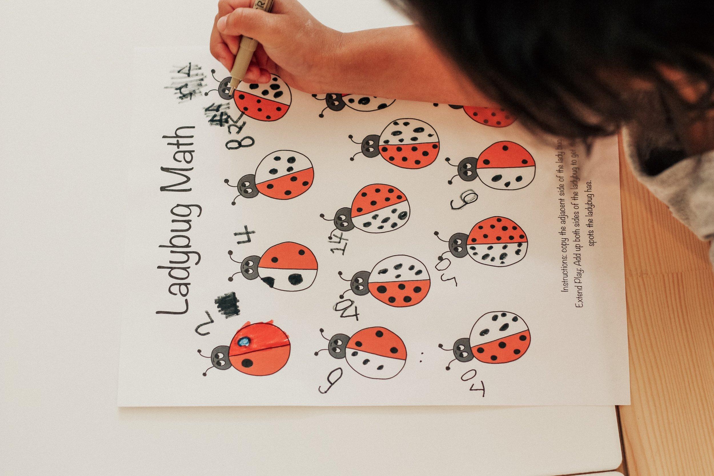 ladybug-math.JPG