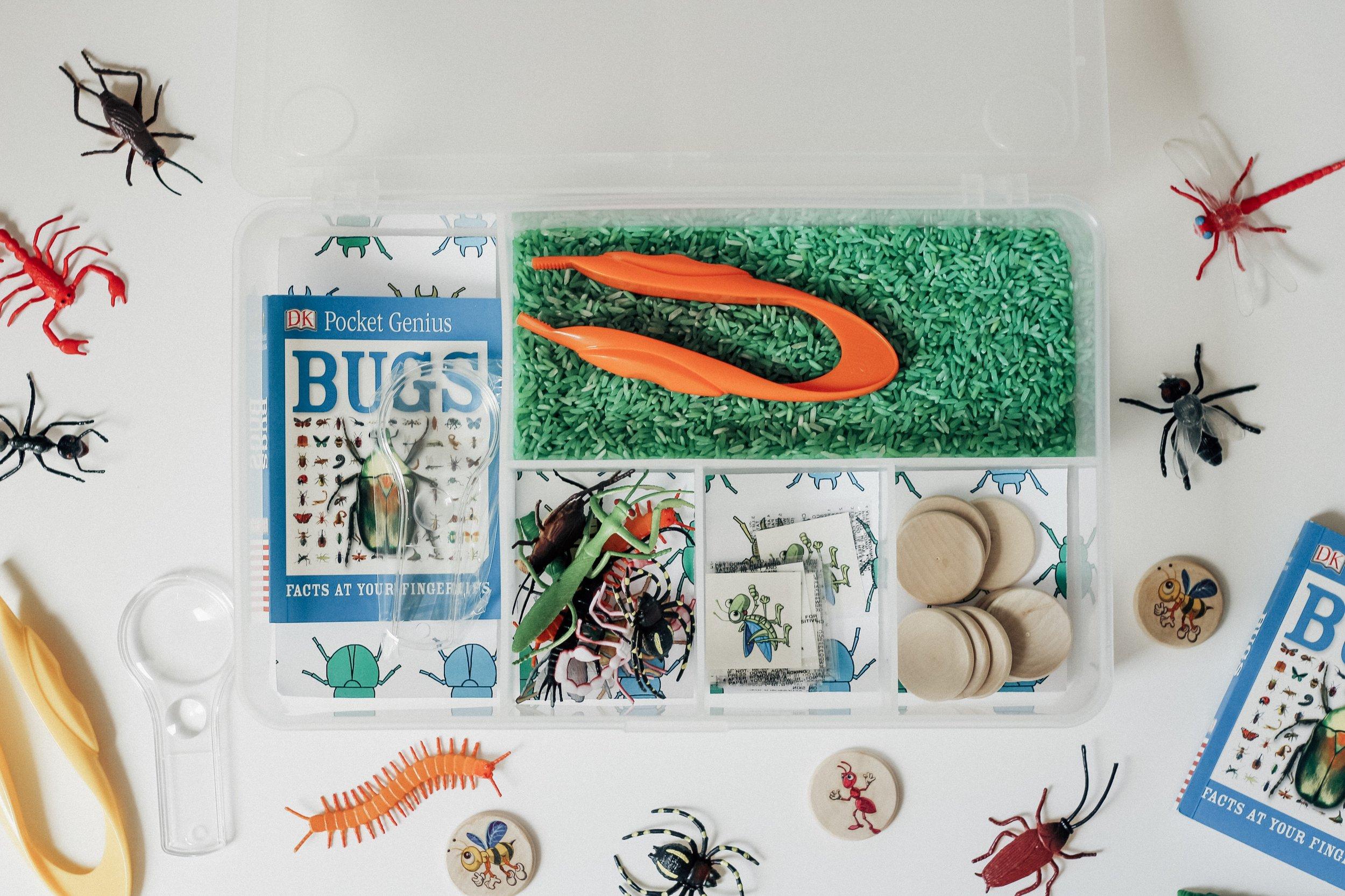 bugs-sensory-kit.JPG