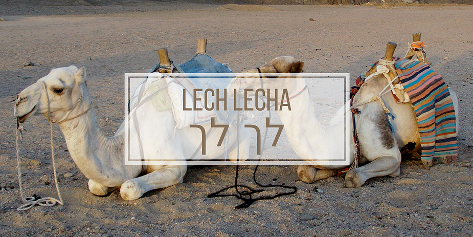 LECH LECHA.png