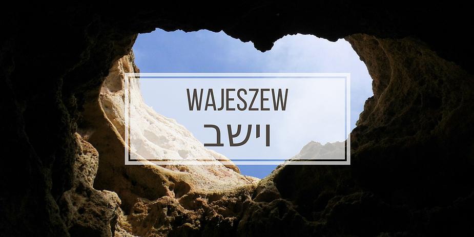 WAJESZEW.png