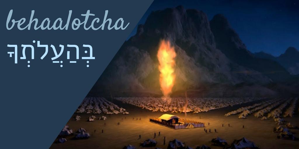 BEHAALOTCHA.png