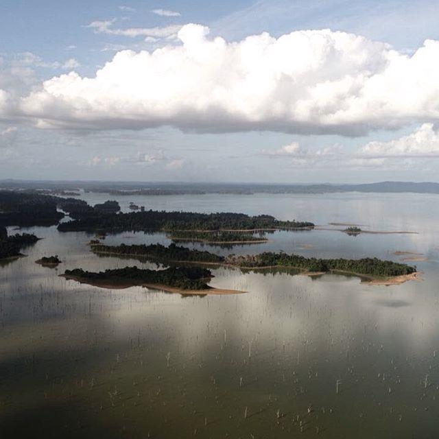 Goeiemorgen! Dit is ons uitzicht vanuit onze werkplaats in Suriname ❤️ Mooier kan een zondag morgen niet zijn!   ❓Hoe jij een bijdrage kan leveren aan de toekomst van onze aarde en een groenere toekomst voor jouw kinderen?   ❇️ Sta er eens bij stil waar de materialen vandaan komen wanneer je nieuwe producten aanschaft. Waar wordt het geoogst en wat is het proces? Wie profiteert of lijdt er onder? Met jouw keuze kan jij invloed hebben op een groenere toekomst voor jezelf en voor jouw kinderen. 💪🏽  -  Good morning! This is the view from our work shop in Suriname ❤️ How beautiful can a Sunday be!  ❓ How can you work on a greener future for our planet and for your children?   ❇️ It is important to pay attention to the source to the materials that the products you buy are made of, where they come from, what the production process is and who benefits and suffers from it. With your choice you can make a difference in creating a greener world for yourself and your kids. 💪🏽  📷 by @fabian_vas 