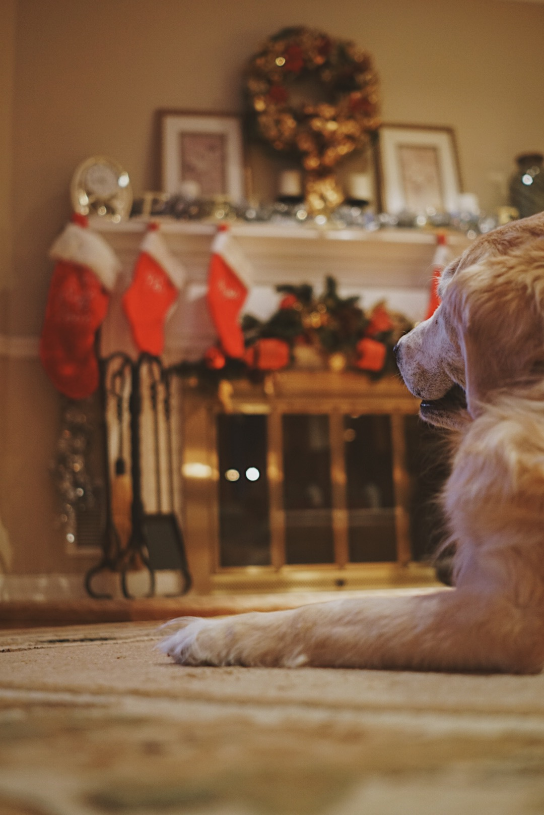 how to create warmth in your photos christmas photos.jpg