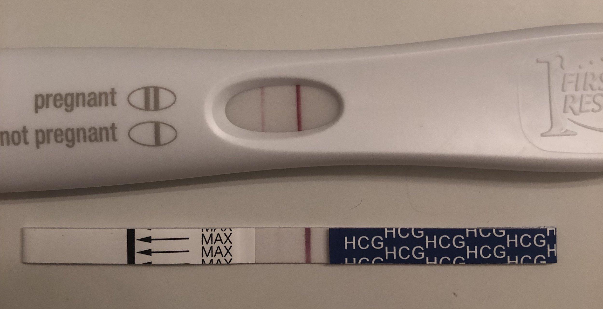 Pregnancy Tests.jpeg