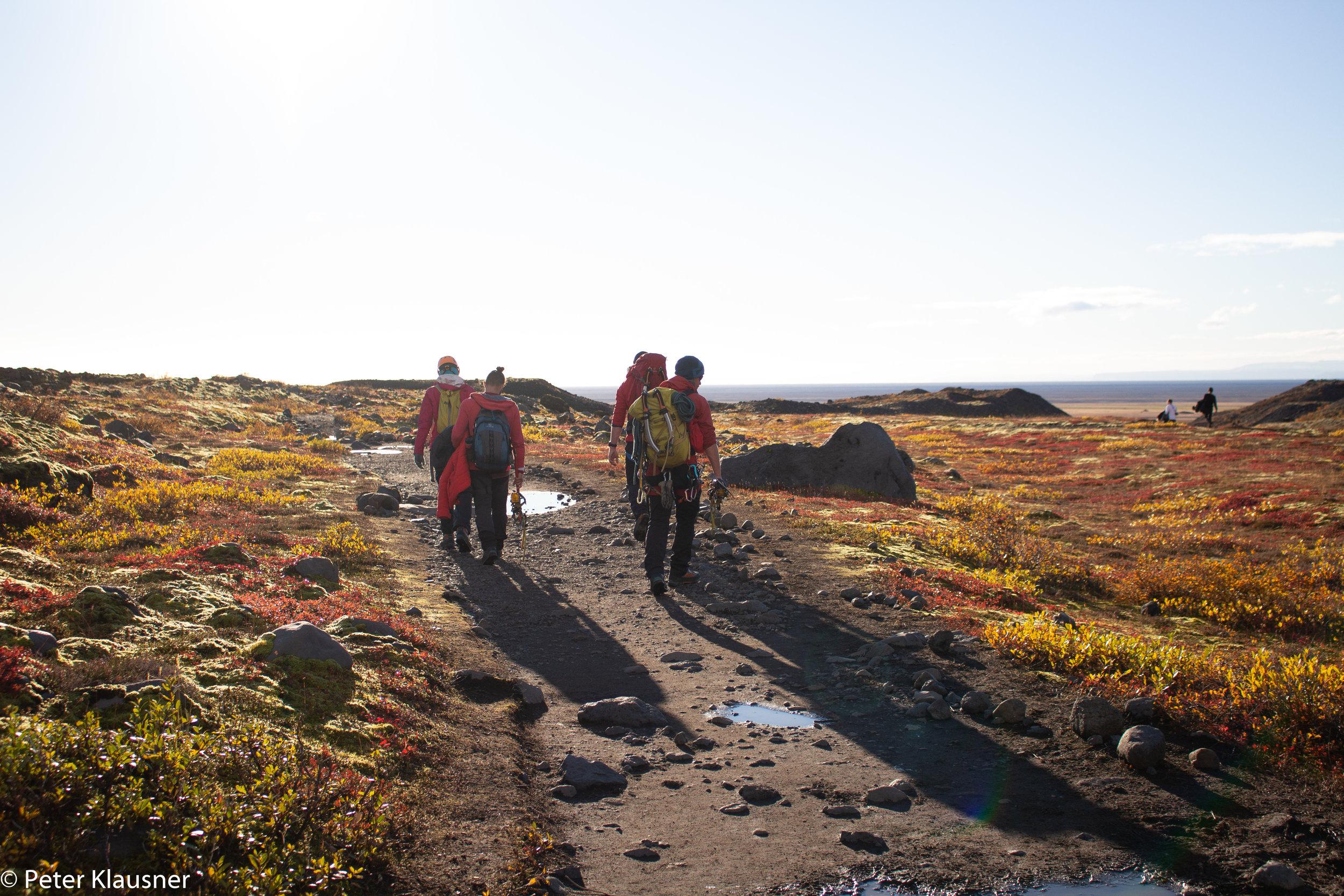 IcelandWebsite-38.jpg