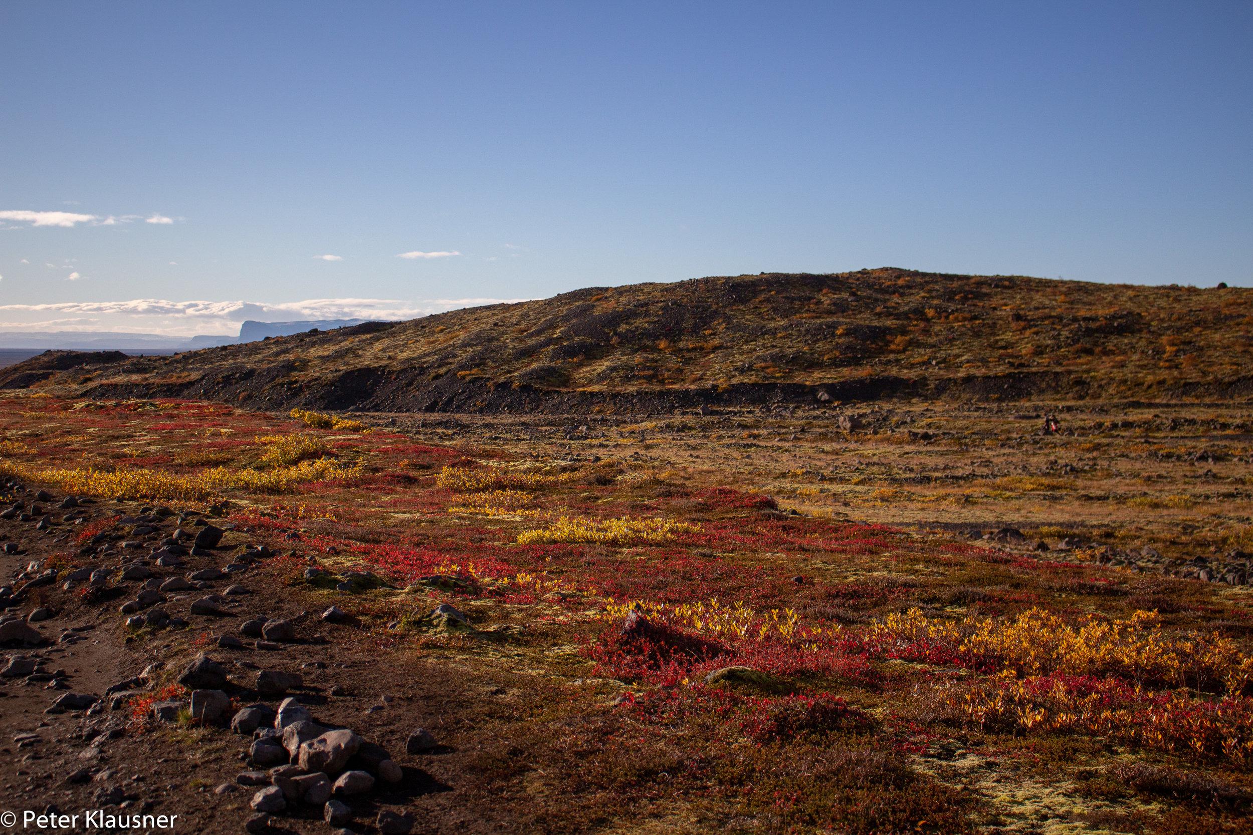 IcelandWebsite-36.jpg
