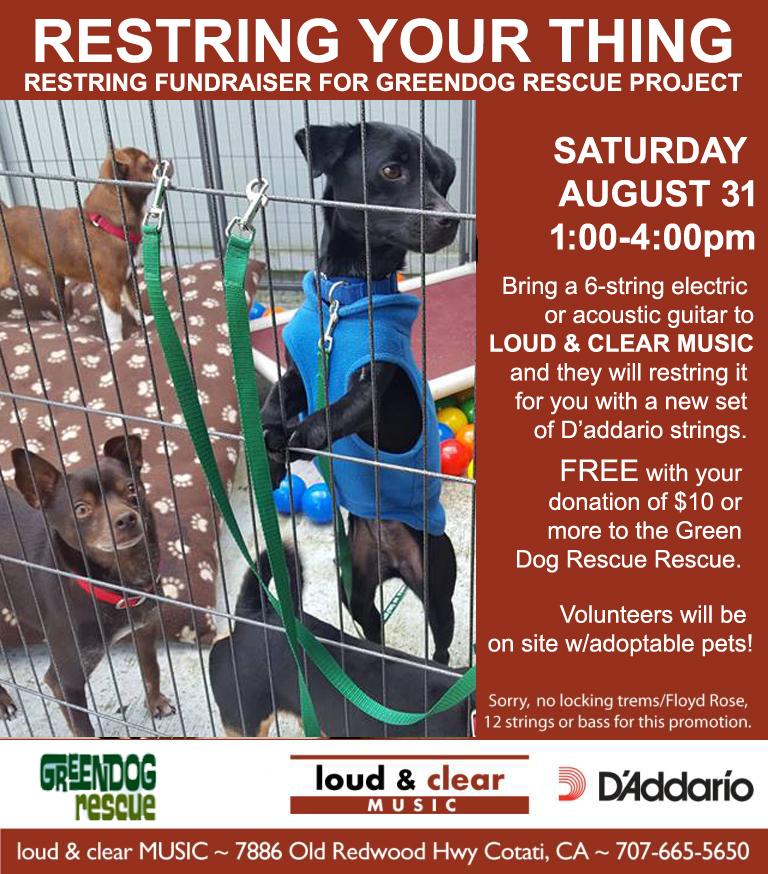 restring AUG 31 2019 green dog copy.jpg