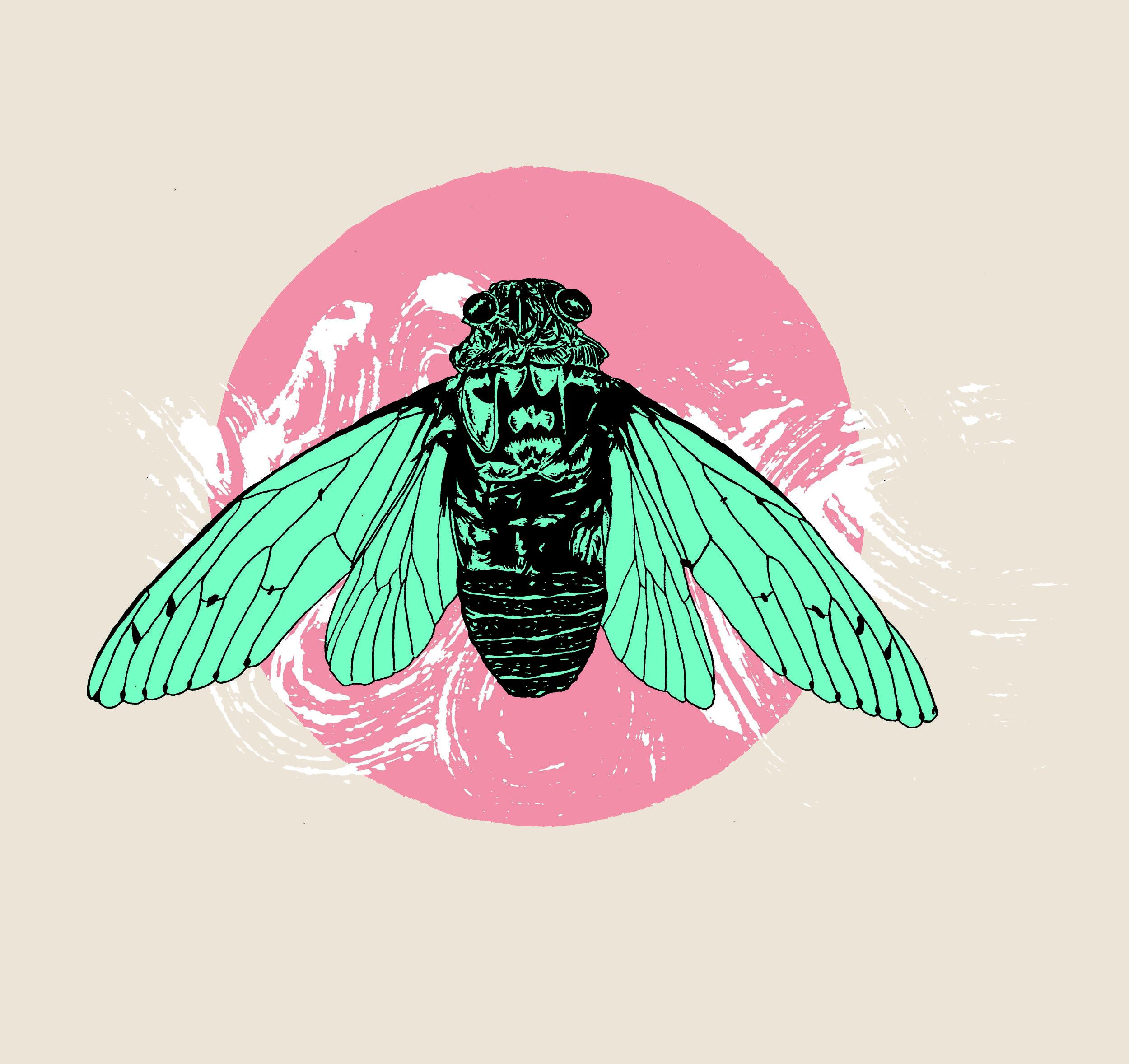 cicada shirt design2.jpg