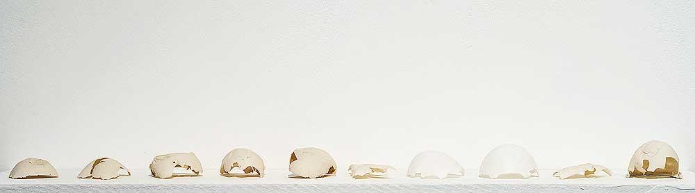 Rebecca Brown , Untitled Installation (Photo: Courtesy of An Talla Solais)