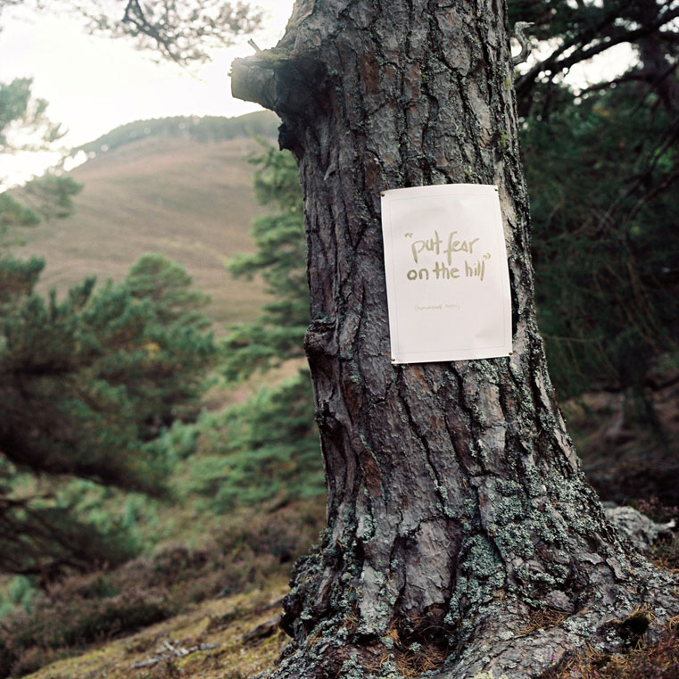 Alec Finlay ,  A Wolf Among Wolves , a manifesto for humandwolves, 2017  Project Wolf, pioneered by Trees for Life, Dundreggan Estate, and National Trust, Mar Lodge. photograph: Mhairi Law