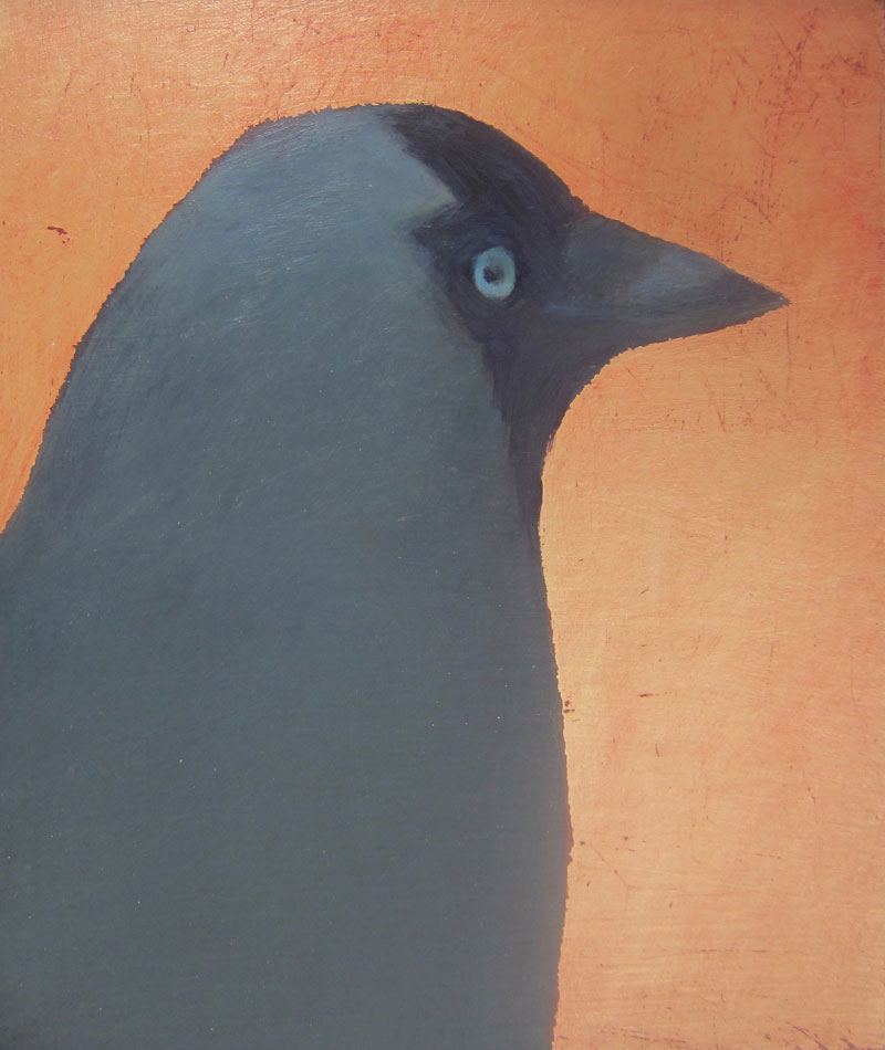 Jane MacNeill ,  Jackdaw , (Oil on Board, image courtesy the artist/An Talla Solais Gallery).