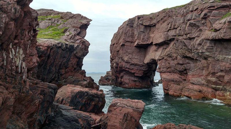 Image: © Bob's Newfoundland