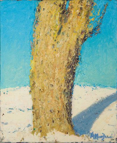Allan MacDonald , o ak shadow , 2019, oil on canvas, 40cm x 30cm