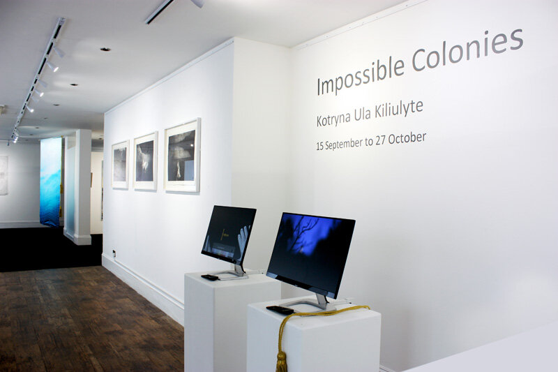 Kotryna Ula Kiliulyte ,  Impossible Colonies , (installation view). (Photo: Ian McKay).