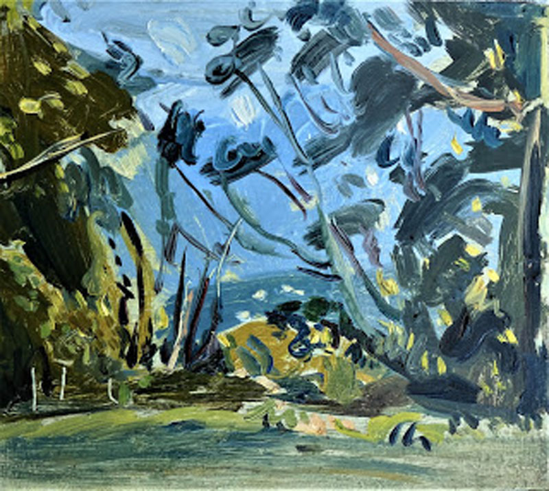 Tadeusz Deręgowski ,  Vargem Grande , Oil on card, 2017