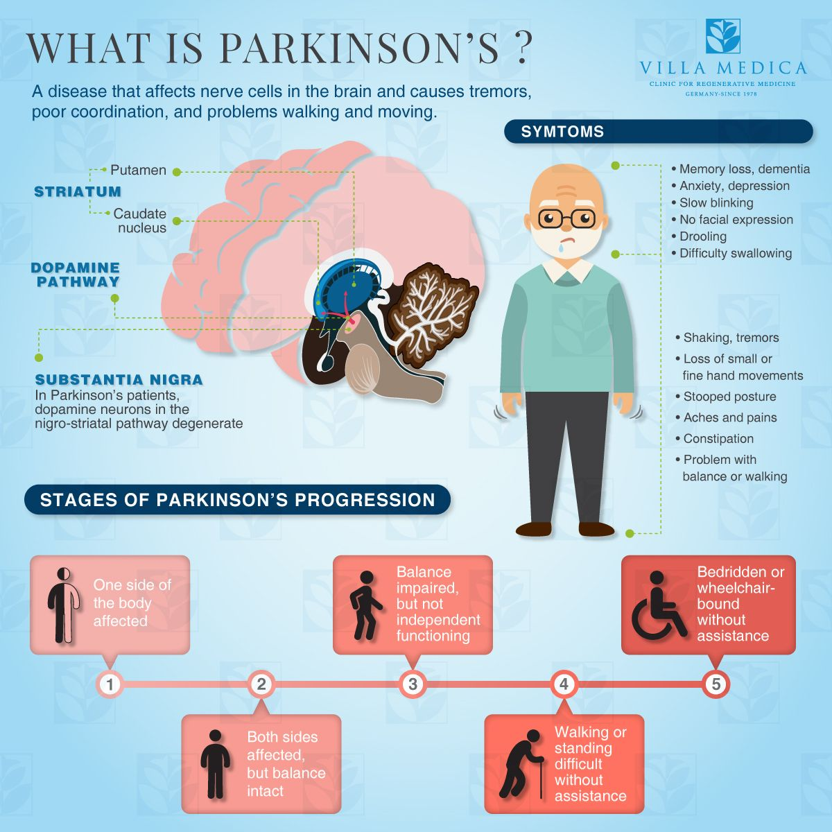 An overview of Parkinson's Disease. (Credit: Villa Medica)