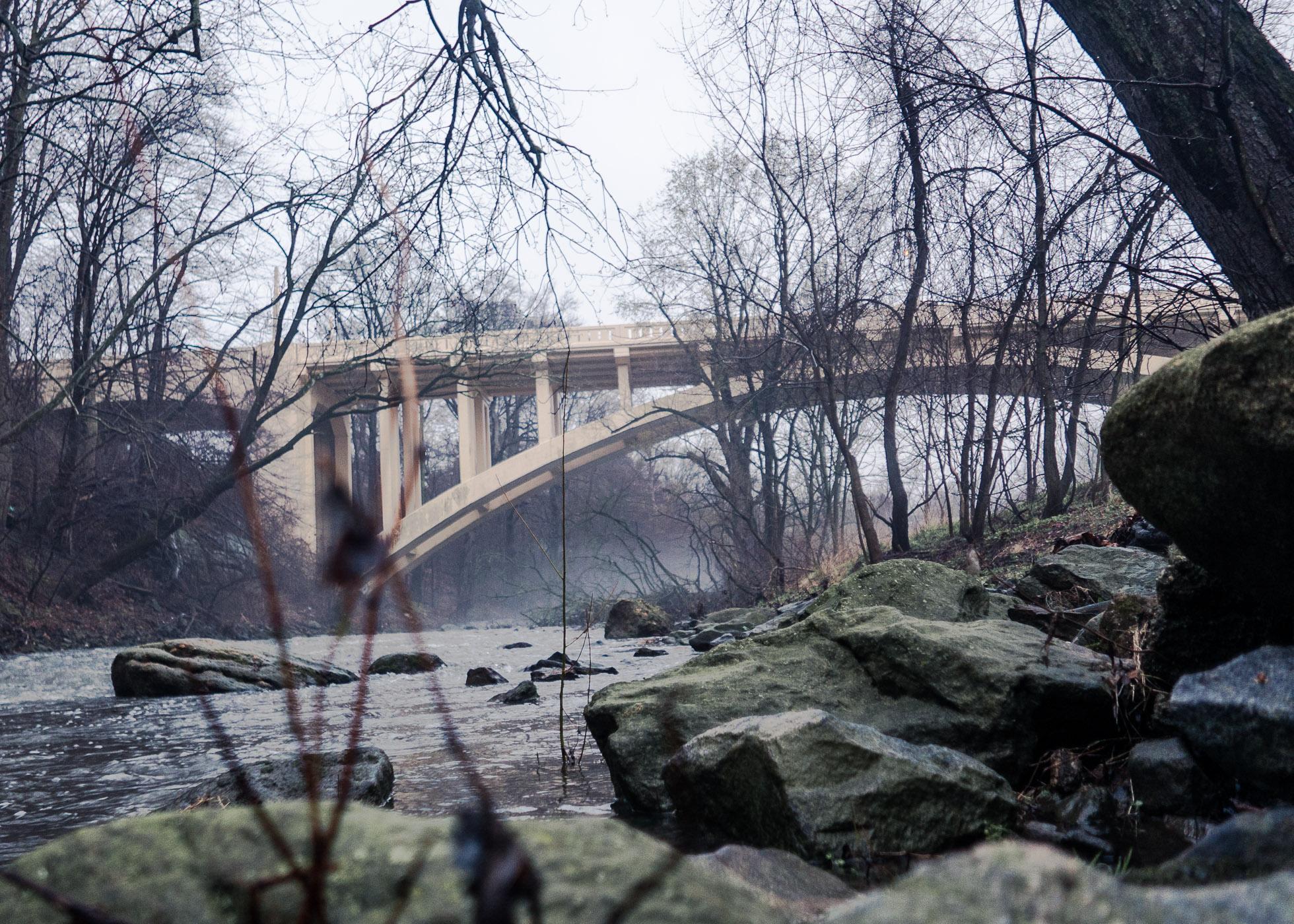 Lindbergh Bridge Over Misty Morning \ \ Kent Park \ \ 4/4/17