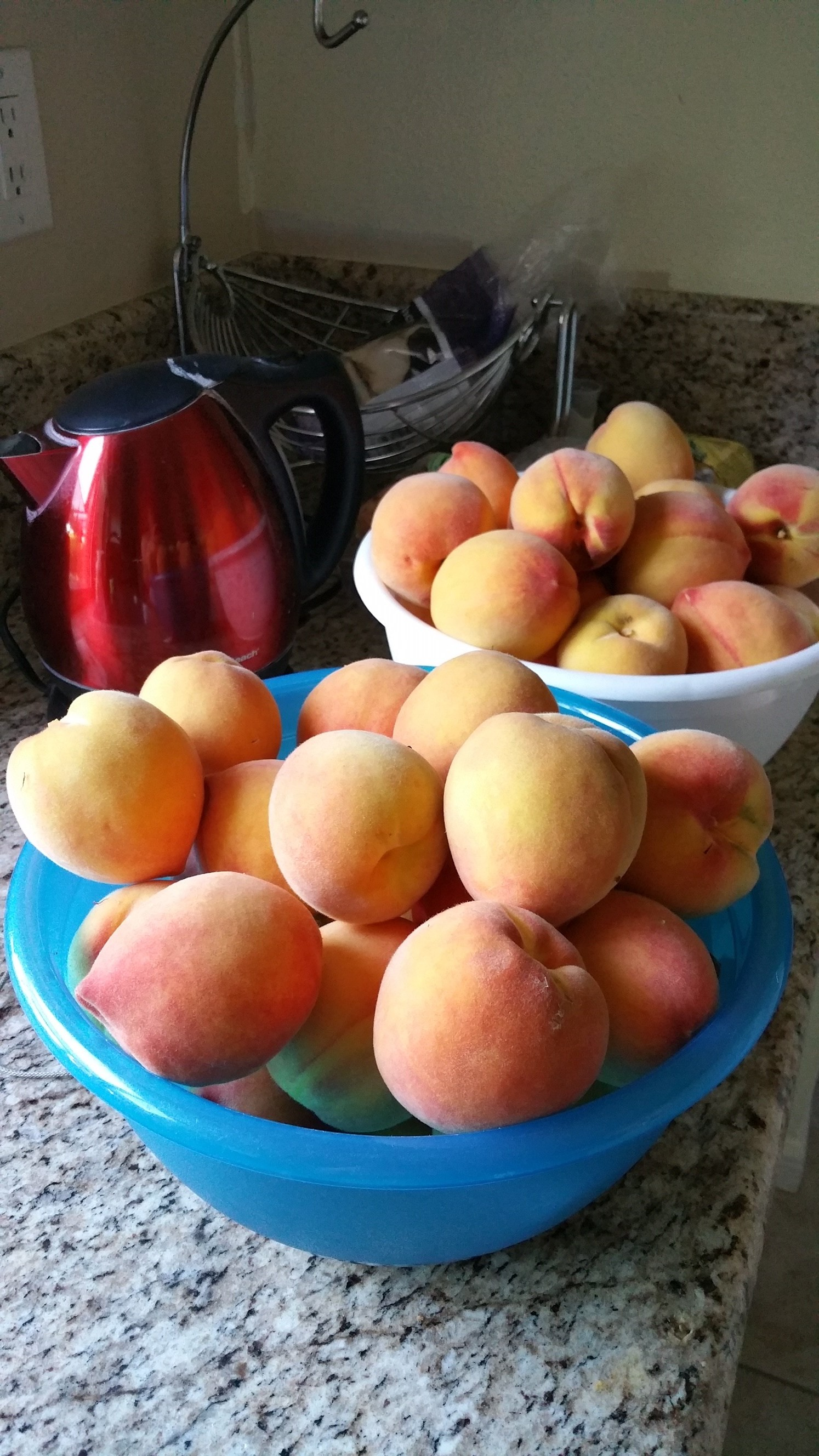 Nancy Wickus, Agriculture/Weights and Measures, grows peaches.