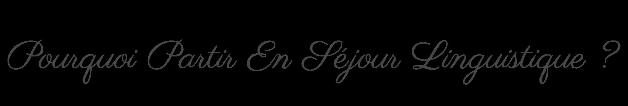 Pourquoi Partir En Séjour Linguistique ?.png