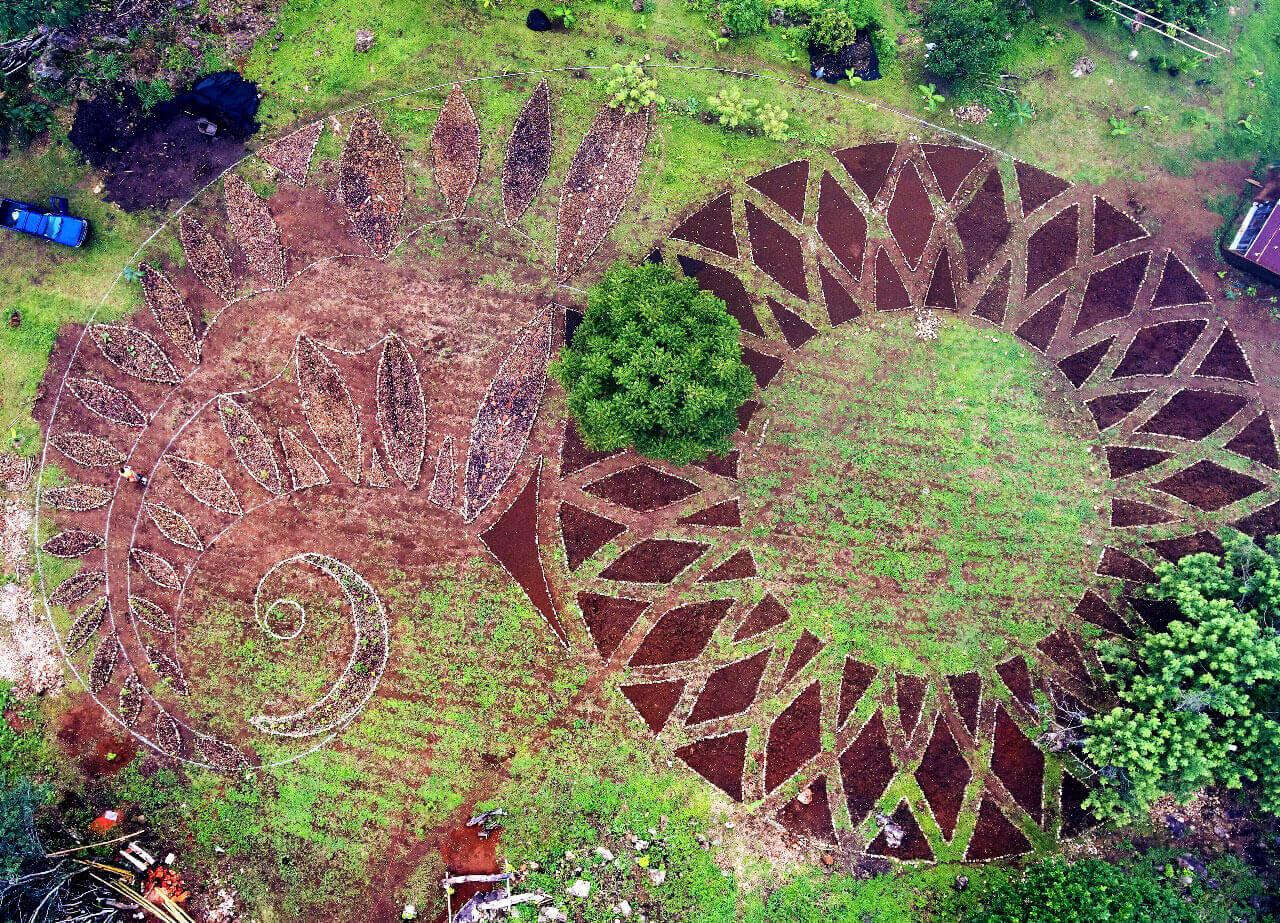 Alegria-farm-drone (1).jpg