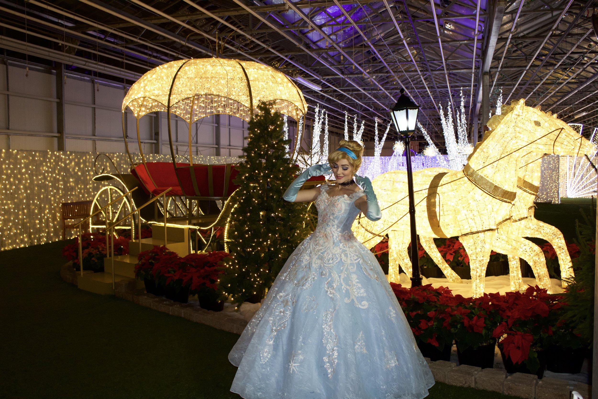 CinderellaGlow10.jpg