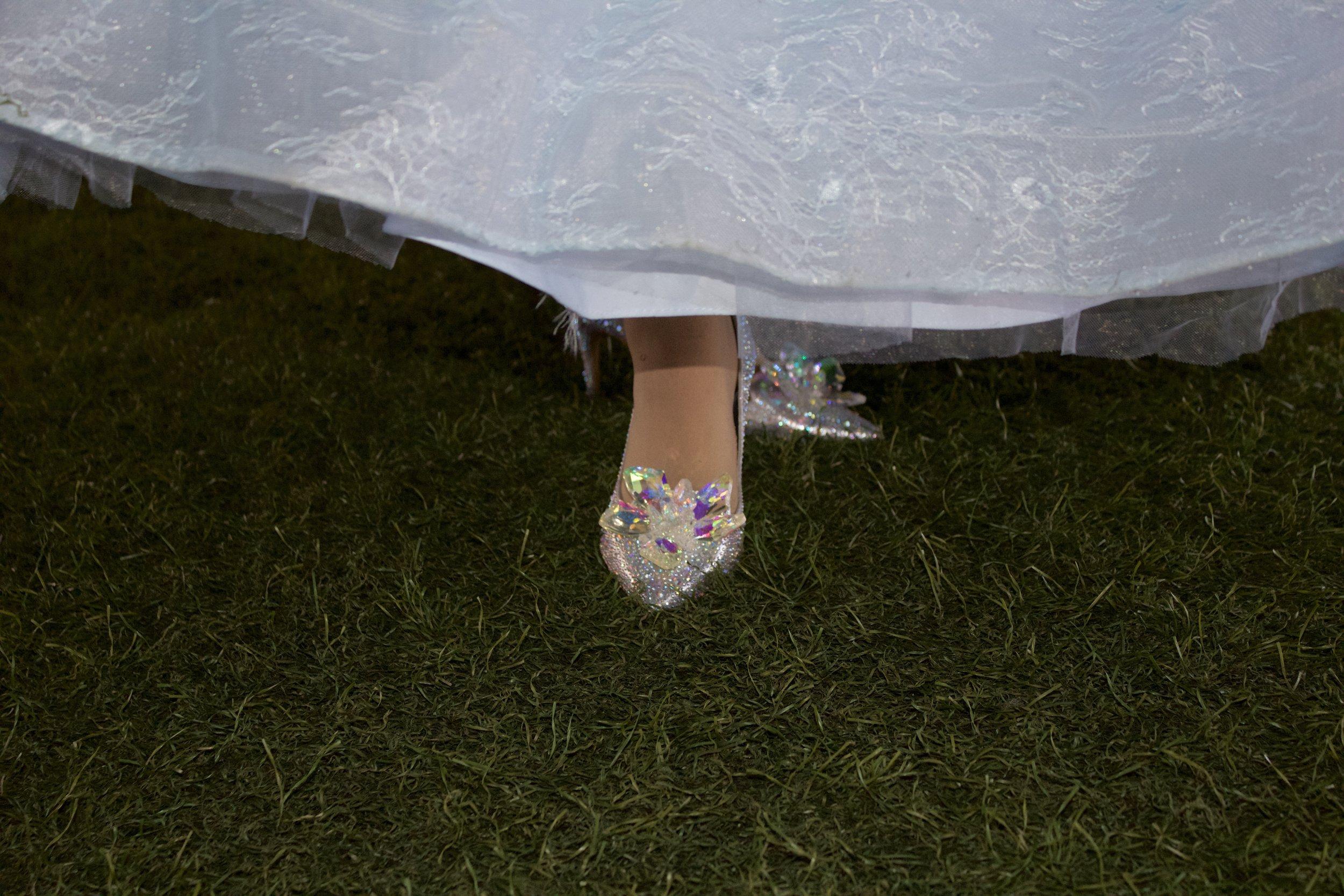 CinderellaShoe.jpg