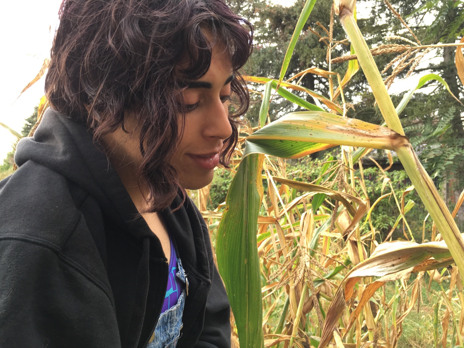 May - May grew up in Madison, Wisconsin and has been farming in Connecticut, Wisconsin and Minnesota. She writes music that touches the soul with the help of her synthesizer and can often be found riding her skateboard or rocking out at a punk concert.