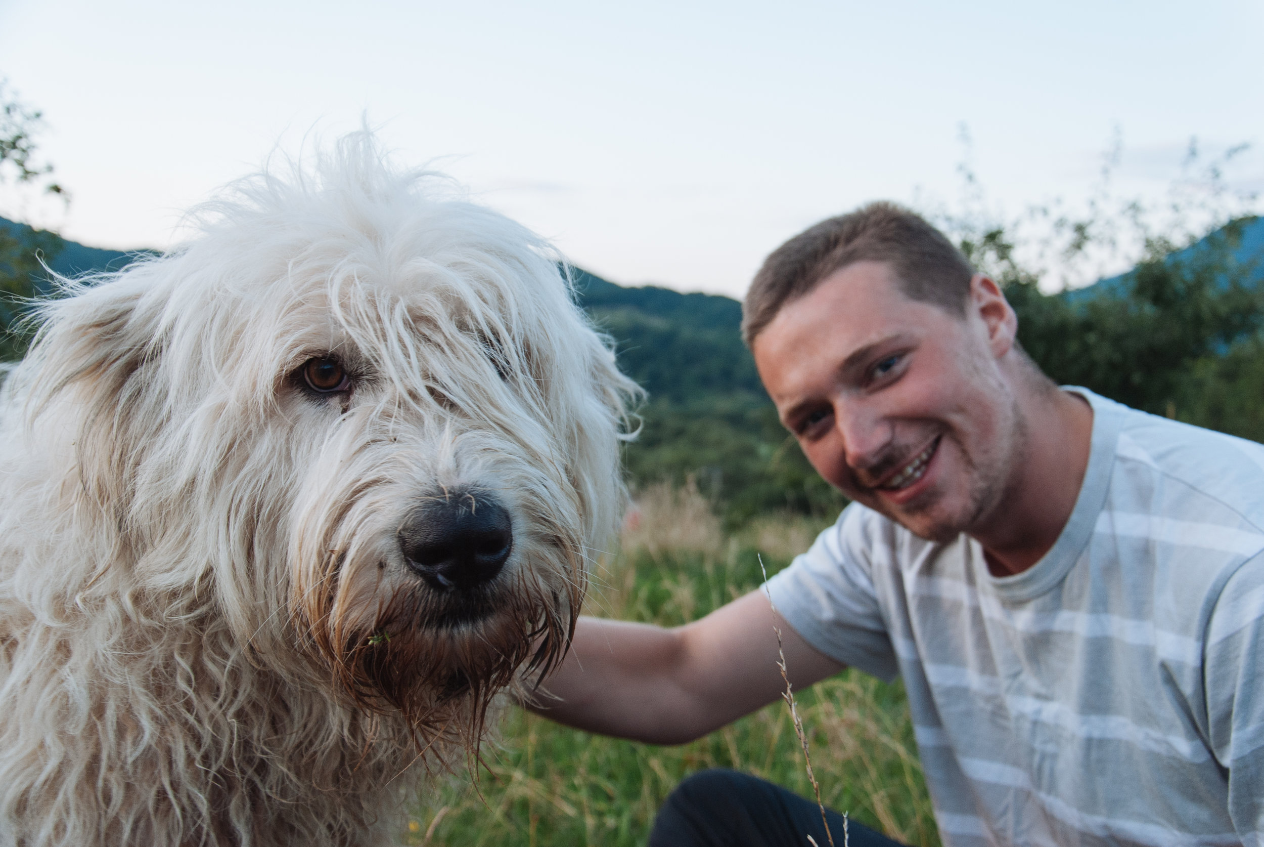 Giant Romanian sheep dog came and sat with us for a large part of the evening